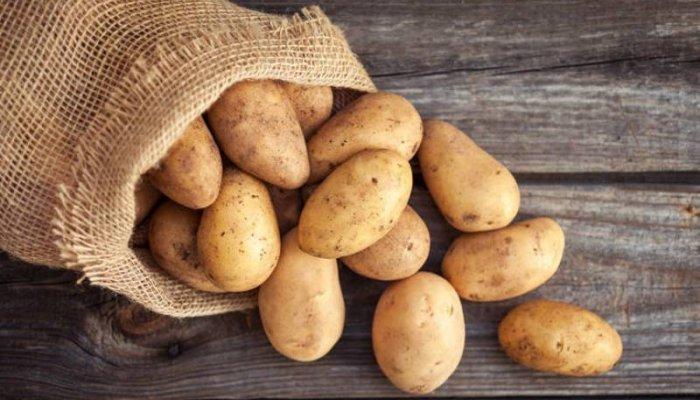 Μειωμένη η παραγωγή και η τιμή στην πατάτα