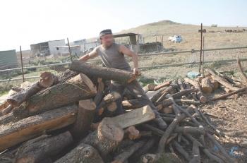 Μάδενα: Εκλεψαν τα ξύλα λαθραίας υλοτομίας