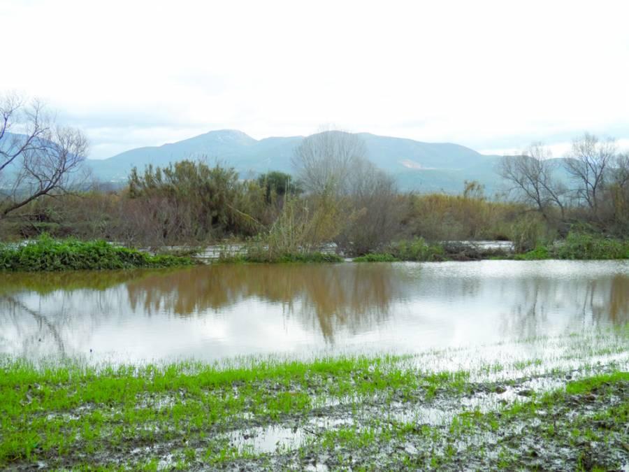 Μεγάλες ζημιές στα πλημμυρισμένα χωράφια (φωτογραφίες) - ΕΛΕΥΘΕΡΙΑ ...
