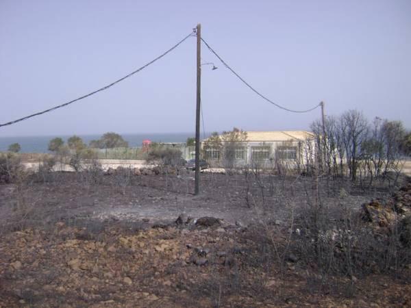 Φωτογραφίες από τις πυρκαγιές στην Κυπαρισσία και το καταστροφικό τους έργο