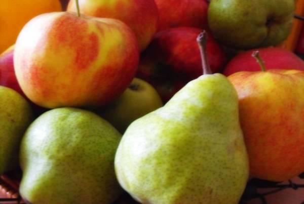 Διανομή φρούτων σε πολύτεκνους της Μεσσηνίας
