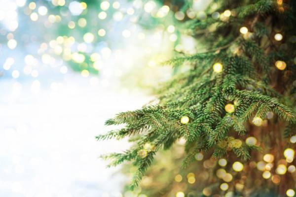 16.959 ευρώ για χριστουγεννιάτικα στολίδια στο Δήμο Τριφυλίας