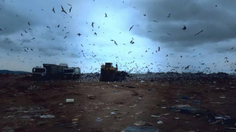 Αττική: Ο γρίφος των σκουπιδιών (Βίντεο)