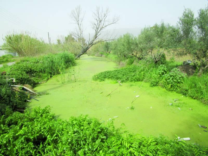 Περιφερειακή Ενότητα Μεσσηνίας: Να καθαριστούν οι γράνες του ΓΟΕΒ για να βρεθούν οι πηγές ρύπανσης