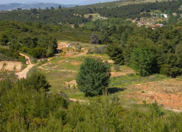 Ανάρτηση προσωρινώνκτηματολογικών πινάκων σε περιοχές της Μεσσηνίας και της Λακωνίας
