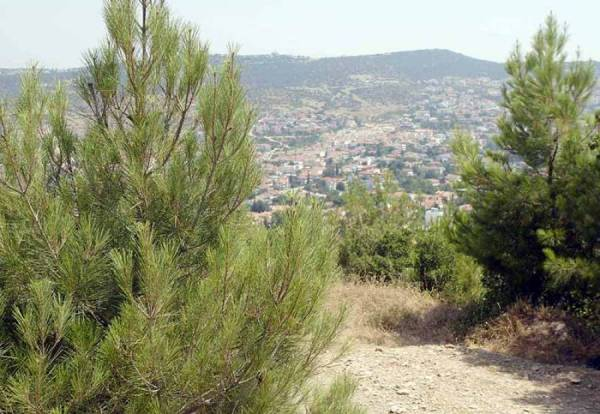 3.700 ενστάσεις στη Μεσσηνία για τους δασικούς χάρτες