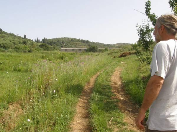 Μεσσηνία: Φάρμα καλλιέργειας κλωστικής κάνναβης κοντά στο Πεταλίδι (φωτογραφίες)