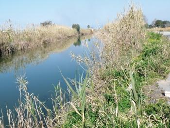Τα ποτάμια της Μεσσηνίας δεν είναι από τα χειρότερα