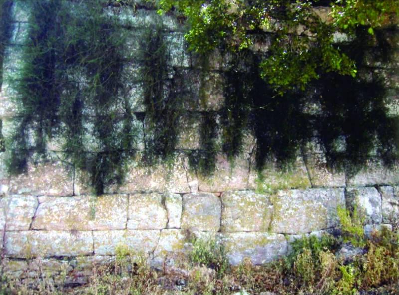 Κάστρα και οχυρά της Μεσσηνίας: Στο λόφο Στυλάρι