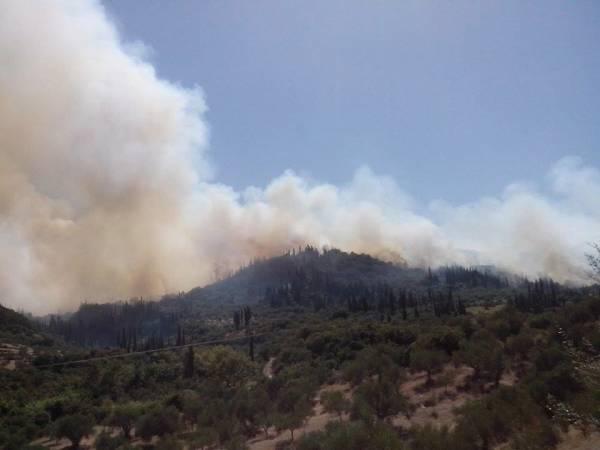 Εκκενώνεται το Μαυρομάτι Ιθώμης Μεσσηνίας. Οι φλόγες πλησιάζουν στο χωριό