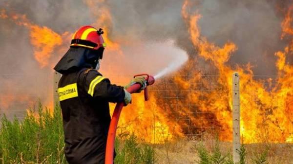 Φωτιά σε δασική έκταση στην περιοχή Γλυκορίζι Μεσσηνίας