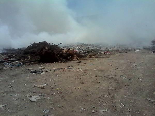 Τριφυλία: Φωτιά σε παράνομη χωματερή στο Αλιμάκι - ΕΛΕΥΘΕΡΙΑ Online