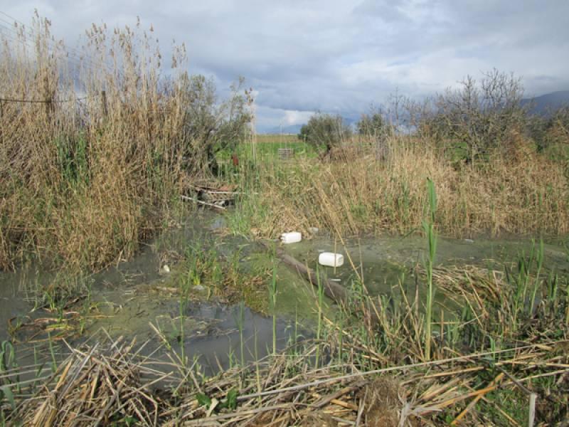 Η άποψη του ΓΟΕΒ Παμίσου για τη ρύπανση των αποστραγγιστικών τάφρων Μουτελάκη και Κασκούτη