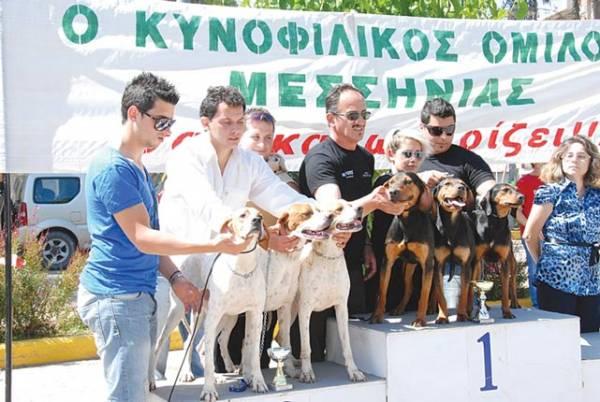 Πανελλήνια Εκθεση Μορφολογίας Σκύλων αύριο στην Καλαμάτα