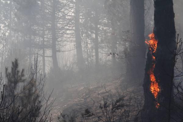 Δραματική κλιματική αλλαγή μέχρι το 2100 στη Μεσσηνία: Ολο και περισσότερες ζέστες και πυρκαγιές