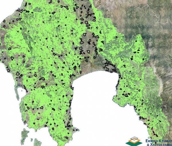 Κινδυνεύουν επιδοτήσεις 139.683 στρεμμάτων στη Μεσσηνία λόγω… δασικών χαρτών