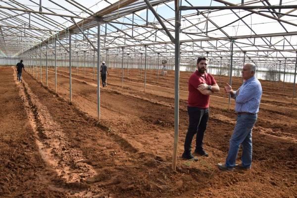 Σπάρθηκε η πρώτη θερμοκηπιακή καλλιέργεια βιομηχανικής κάνναβης στη Μεσσηνία (βίντεο)