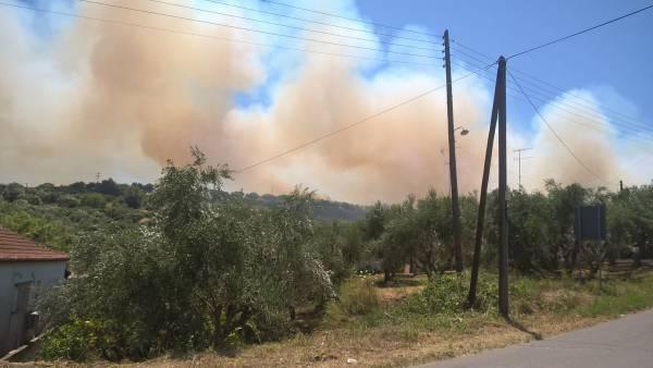 Υπό μερικό έλεγχο η φωτιά στην Κορώνη: Εχει κάψει 30 στρέμματα (βίντεο)