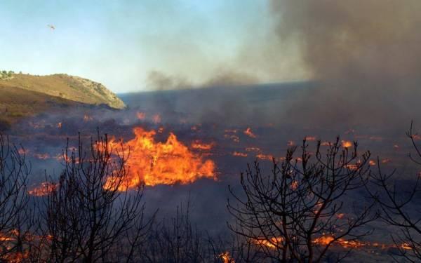 Φωτιά σε δασική έκταση στην Μεταξάδα